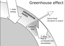 What is Greenhouse Effect and What are Greenhouse Gases?