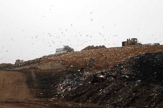 landfill-in-minnesota-soil-pollution