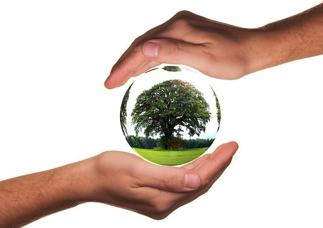 protect-hands-ecology-protection