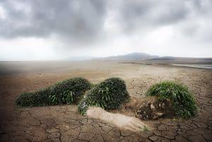 nature-environment-destruction