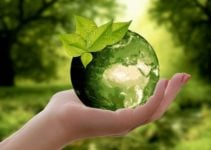 Global Warming is a Real Issue – Reducing Your Carbon Footprint