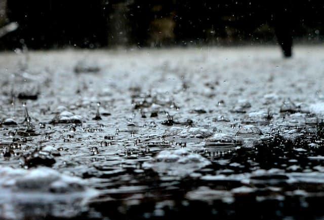 black-and-white-clear-cool-dew-rain