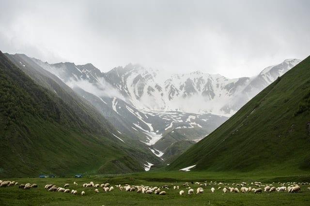 grass-field-near-mountains-valley