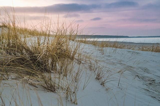 baltic-sea-sand-dune-grass-beach-sea