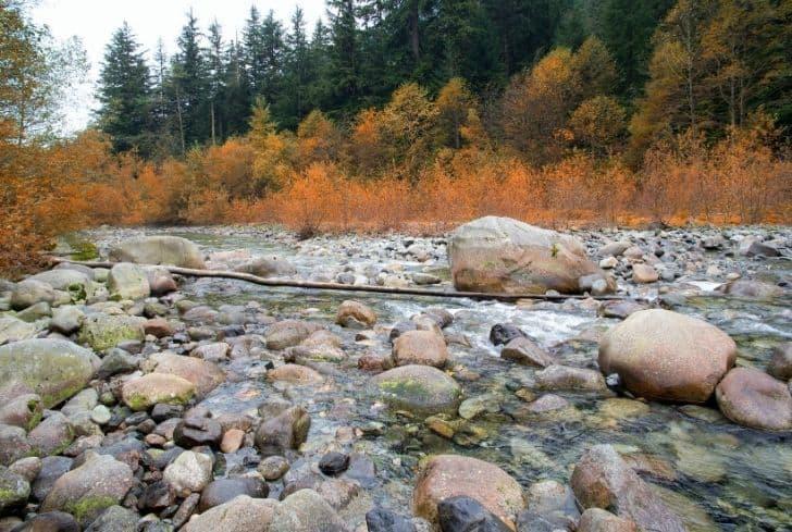 Episodic River