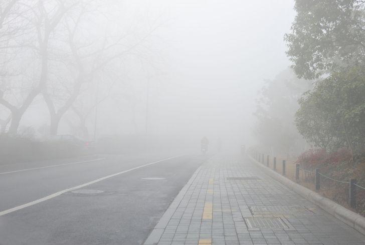 fog-in-morning