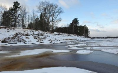 Do Rivers Freeze? (And What Temperature Does a River Freeze?)